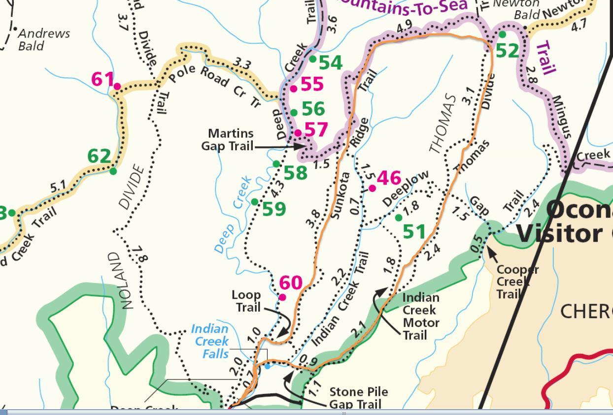 Smoky Mountains - Deep Creek to Newton Bald Loop Hike - Uphillhike on
