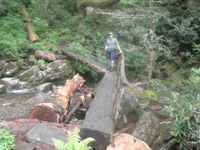 Doglegged Bridge on Ramsey Creek Trail