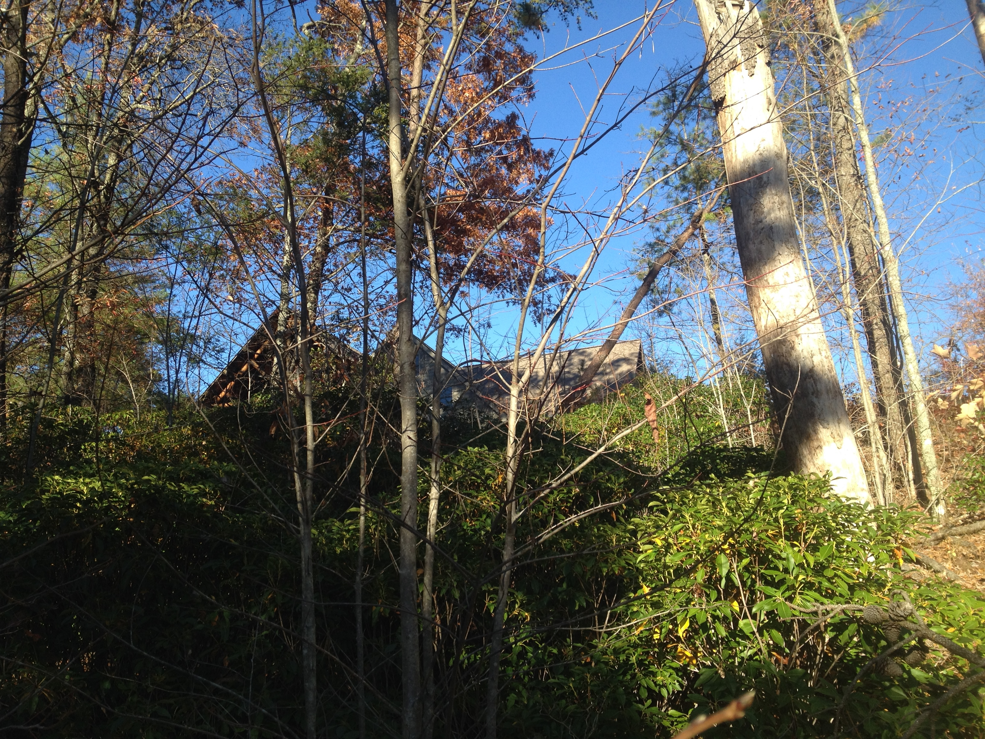 House Seen from Ace Gap Trail
