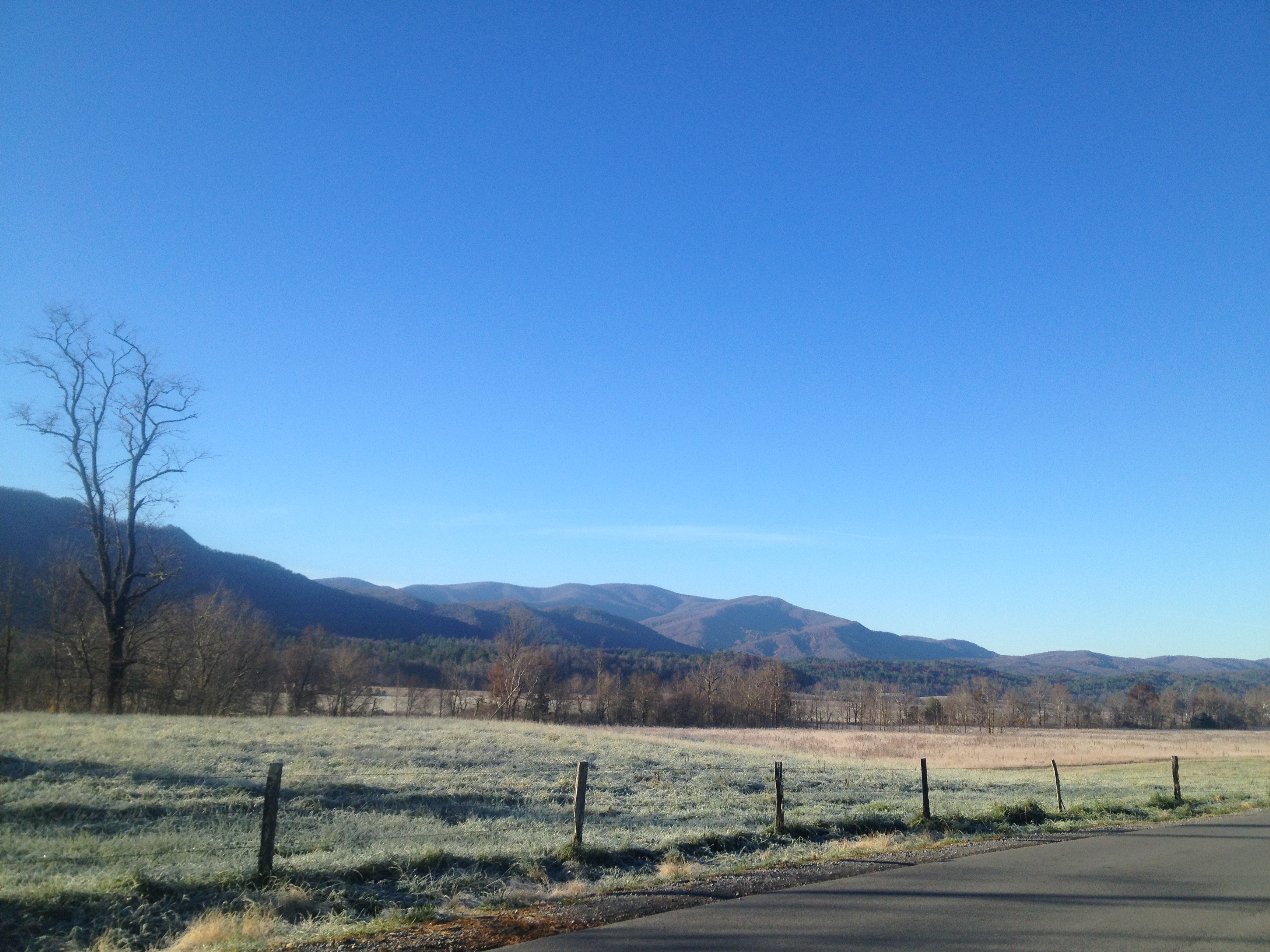 Cades Cove view of Gregory Bald