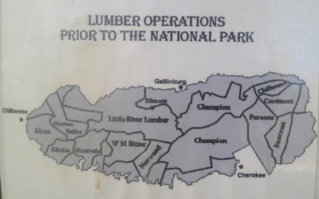 Lumber Operations was displayed at Oliver Cabin.