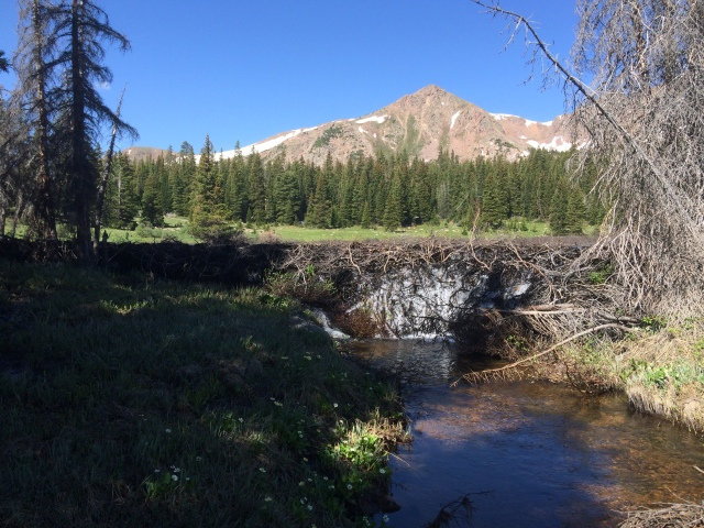 Beaver Dam with Red Peak in background.