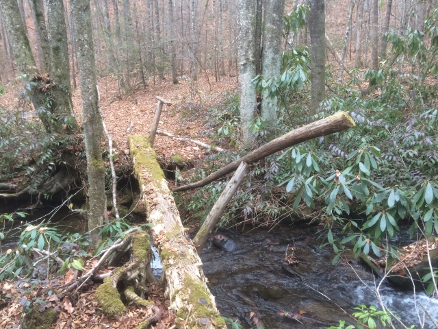 Broken handrail on split log bridge on Deeplow Trail near Indian Creek. Also, the edges of the long on the near side are rotted off leaving a rounded surface to balance on as I started the crossing. Good thing I practice balancing on my son's slack line. :-)