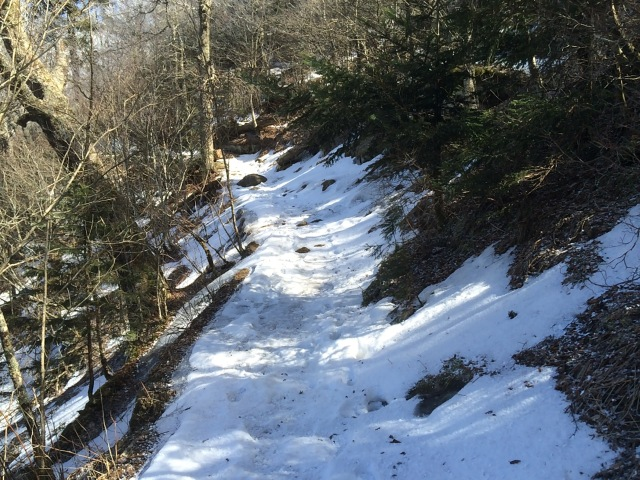 Snow Covered Appalachian Trail above Newfound Gap.
