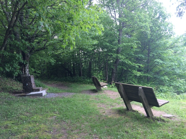 Nicest seats along any trail in the Smokies is on Flat Top Mountain trail near Heintoga Picnic Area.