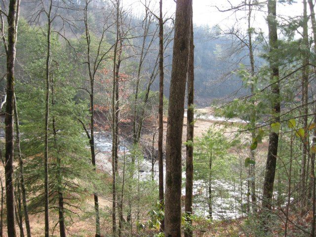 Eagle Creek on Lakeshore Trail near Campsite 90